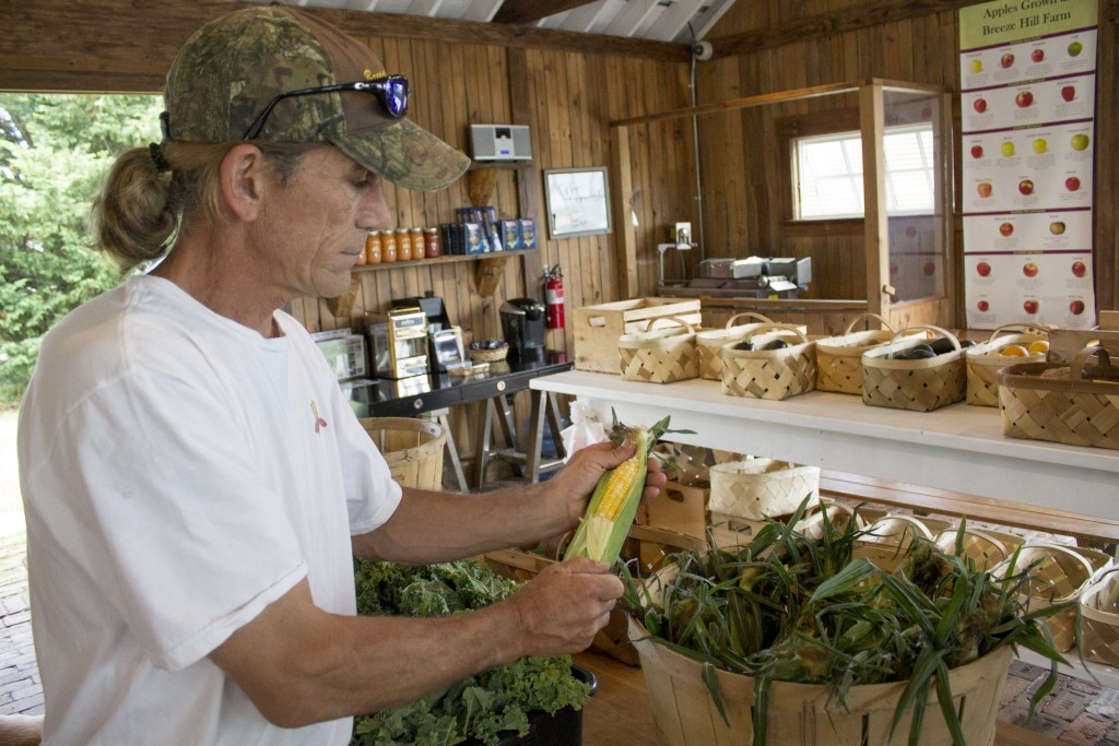 On Thursday, Scott DuBois at Breeze Hill Farm was selling corn he purchased from Georgia, but by Friday or Saturday, he will begin selling his own corn — just in time for the Fourth of July weekend. (Credit: Chris Lisinski)